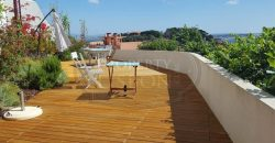 4 Apartments in one building,with HUGE roof terrace Amazing City & River View, Graça