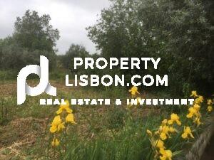 8 Bed Villa for -sale in Alentejo, Portugal