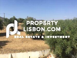 8 Bed Villa- for sale in Alentejo, Portugal