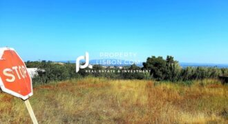 0 Bed Land in Óbidos Silver Coast – 88000€